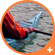 Sea kayak courses